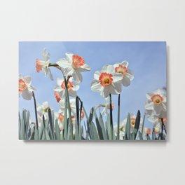 Nature Field Flowers Metal Print