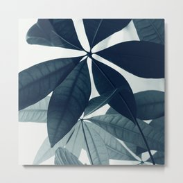 Pachira Aquatica #4 #foliage #decor #art #society6 Metal Print