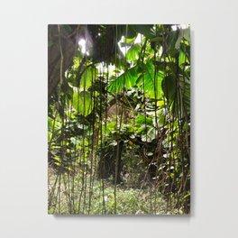 Jungle Vines Metal Print