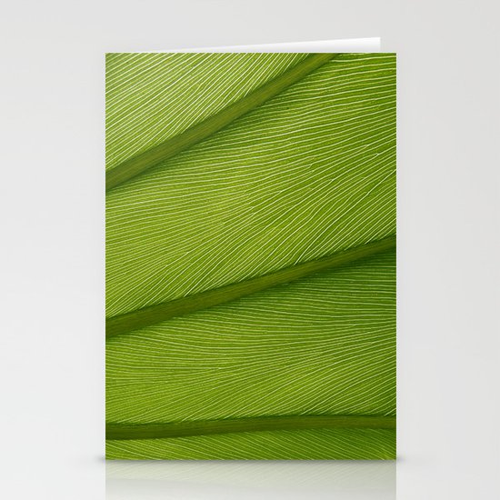 Green Leaf Texture 05 by yiomultimedia