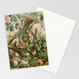Vintage Snails and Mushroom Natural History Illustration  Stationery Cards