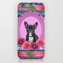 French bulldog in Frame with Gerbera flowers iPhone Case
