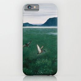 Theodor Kittselsen - The Twelve Wild Ducks (1897) iPhone Case