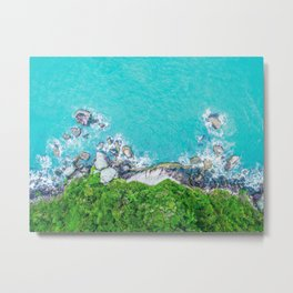 Parrot View of Tropical Heights Metal Print