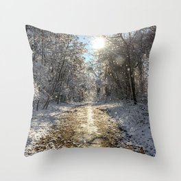 After the Snow Throw Pillow