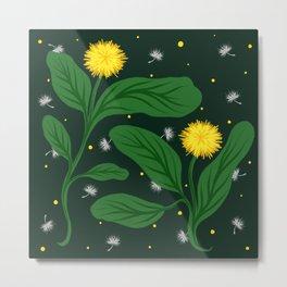 Dandelion Blooms Metal Print