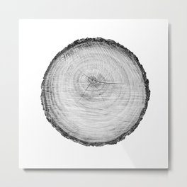 Realistic monotone photo of detailed cut tree slice with rings and organic texture Metal Print