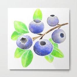Blueberry Summer Metal Print