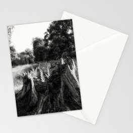 Larvae Haven Stationery Cards