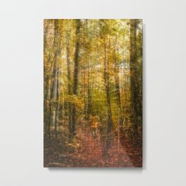 Woodsy Walk Metal Print