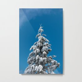 Winter Forest Fir Tree Snow X - Nature Photography Metal Print