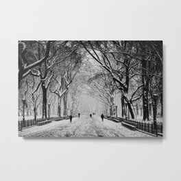Snow in Central Park Metal Print