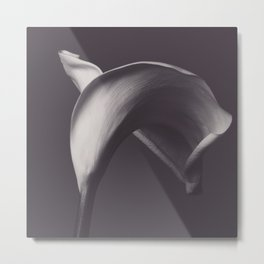 Calla lily photo, fine art, flowers photography, flower still life, wall decor, Robert Mapplethorpe Metal Print