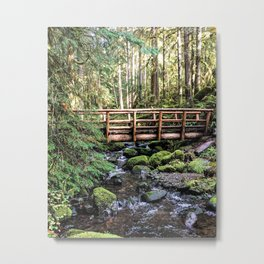 Wanderlust Beauty // Take Me to the Forest Where the Peaceful Waters Flow in the Dense Woods Metal Print