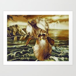 Mellow Gold Lighting On The Iris At The Sea Side Art Print