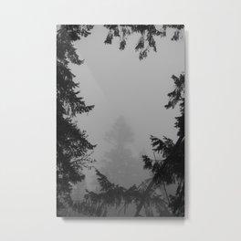Foggy Frame Metal Print