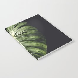 Monstera Deliciosa Notebook