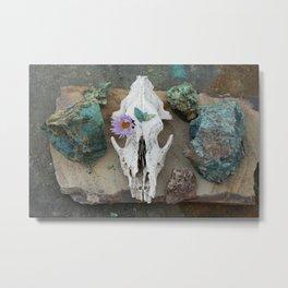 Coyote Shaman Altar Metal Print