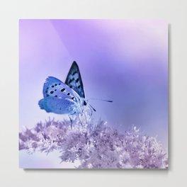 Butterfly blue 72 Metal Print