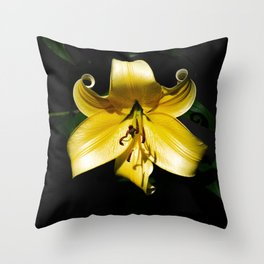 Pale Yellow Lily with a Dark Background Throw Pillow