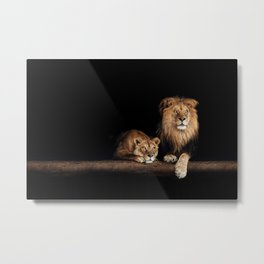 Portrait of Lion Family on dark background - vintage nature photo Metal Print