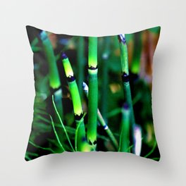 The Scouring Rush Throw Pillow