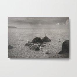 Seagulls in storm, film scanned Metal Print