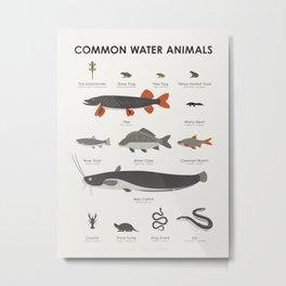 Common Water Animals Metal Print