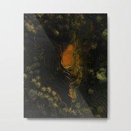 Planting rice is an Art Metal Print