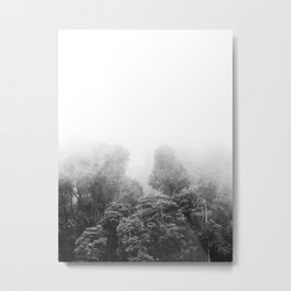 Misty Jungle Forest Black and White Landscape Photography Metal Print