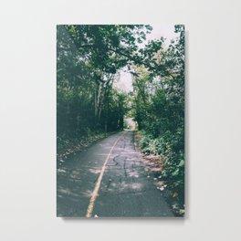 River Valley Path Metal Print