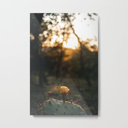 This Is Not A Sunflower.  Metal Print