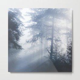 Sun rays shinning through foggy forest Metal Print