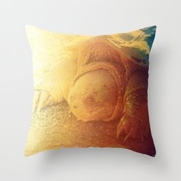 Looking Snappy Throw Pillow