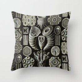 Ernst Haeckel - Tetracoralla (Corals) Throw Pillow