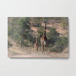 Giraffe Goodbye Metal Print