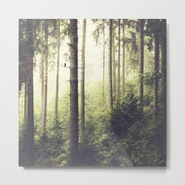Morning Song - Misty Forest Metal Print