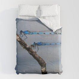 Damselflies Comforters