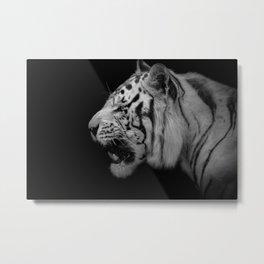 White Tiger Portrair Metal Print