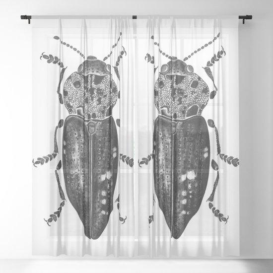 Beetle 11 by kejla