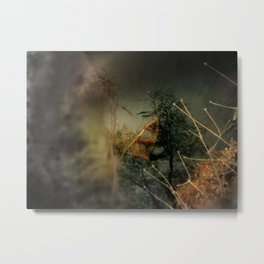 Ancient Egyptians and meteorites were so inspired by the act of self-stimulation. Metal Print