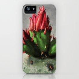 Blooming Opuntia Cactus Flower iPhone Case