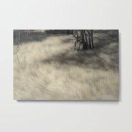 """Sylvan Glade"" by Murray Bolesta Metal Print"