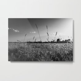 Countryside wheat field landscape - Nature in black and white Metal Print