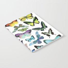 Butterfly Rainbow Notebook