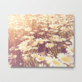 Daisy photograph, We Need Each Other Metal Print