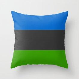 TSSC Banner Throw Pillow