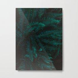 Blue Fern Twilight Metal Print
