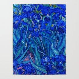 Van Gogh Irises in Indigo Poster