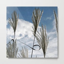 GRASSES in AUTUMN WIND Metal Print